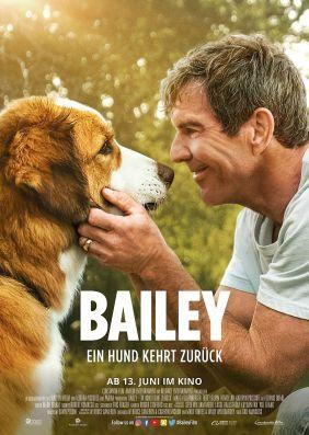 Plakatmotiv: Bailey - Ein Hund kehrt zurück