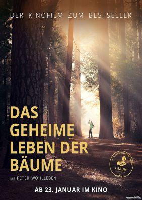 Plakatmotiv: Das geheime Leben der Bäume